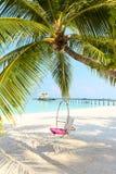 Круглое качание рая над мечтательным песчаным пляжем с ба воды океана стоковое фото rf