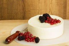 Кругло сыра с смородинами и ягодами Стоковое Изображение