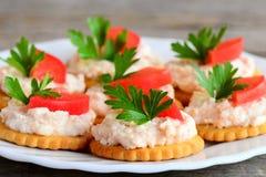 Круглые шутихи печенья с плавленым сыром на плите сервировки Здоровая закуска от посоленных шутих печенья, смачный плавленый сыр Стоковое Фото