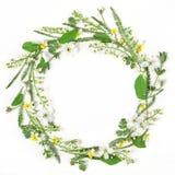 Круглый венок рамки сделанный из изолированных цветков и листьев весны на белой предпосылке Плоское положение Стоковые Изображения