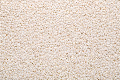 Круглый рис Стоковое фото RF