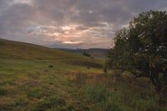 Круглый стог сена на склоняя зеленом поле в пасмурной погоде Стоковые Изображения