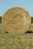 Круглый bale сена Стоковое Фото