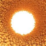 Круговой тоннель апельсинов Стоковые Фотографии RF