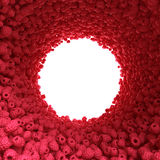 Круговой тоннель поленики Стоковая Фотография