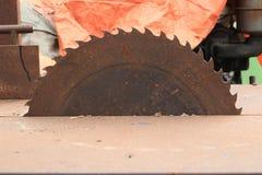 Круговые деревянные пилы Стоковая Фотография RF