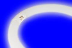 Круг лампы Стоковое Изображение RF