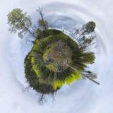 Круглая планета деревьев Стоковое Изображение RF
