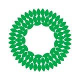 Круглая рамка листьев Стоковая Фотография