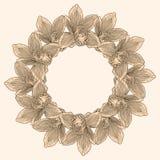 Круглая рамка сделанная из цветка орхидеи Стоковые Изображения