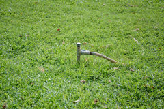Круглая резинка Faucet и в саде Стоковые Фото