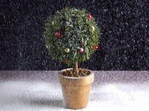 Круглая рождественская елка Стоковые Изображения RF