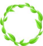 Круглая сделанная из листьев при изолированный космос текста стоковое фото rf