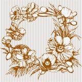 Круглая флористическая рамка сделанная с маками Стоковые Фото