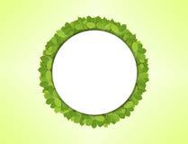 Круг белой бумаги сделанный из зеленых листьев Стоковое фото RF