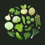 Круг зеленых овощей иллюстрация вектора