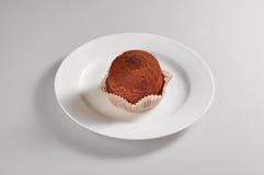 Круглое блюдо с трюфелями сладостного шоколада Стоковая Фотография RF
