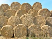 Круглое сено стоковое изображение