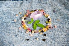 Круг самоцвета Стоковые Фото