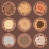 Круг текстуры куска хобота дерева деревянный отрезал деревянной лес лет завода детали вектора сырья текстурированный историей гру иллюстрация вектора