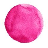 Круг тысячелистника обыкновенного акварели розовый на белой предпосылке бесплатная иллюстрация