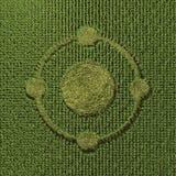 Круг урожая Стоковые Изображения RF