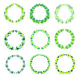 Круглые зеленые винтажные рамки с листьями Стоковое Изображение