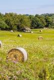 Круглые связки соломы в поле лета Стоковые Изображения RF
