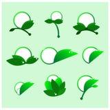 Круглый зеленый вектор значков Стоковое Фото