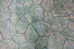 Круглый камень с предпосылкой текстуры пола мха Cir Pavers патио Стоковое Фото