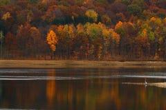 Круглый парк долины - отражение осени - человек и природа Стоковые Фотографии RF
