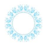 Круглый флористический орнамент Стоковое Изображение