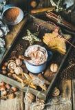 Кружка горячего шоколада, печений пряника, гаек в деревянном подносе Стоковое фото RF