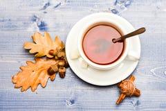Кружка заполненная с чернотой заварила чай, ложку и упаденные осенью листья на голубой деревянной предпосылке Питье и жолудь и ду Стоковая Фотография RF