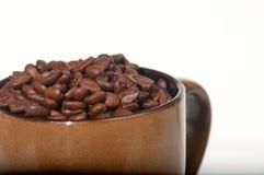 кружка кофе фасолей Стоковые Изображения
