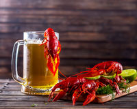 Кружка пива и кипеть раков на деревянном столе Стоковое Изображение