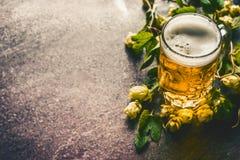 Кружка пива с пеной на таблице с свежими хмелями Стоковое фото RF