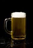 кружка пива Стоковая Фотография RF