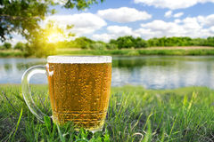 кружка холода пива стоковое изображение rf