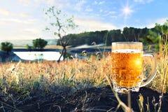 Кружка холодного пива на заходе солнца Стоковое Фото