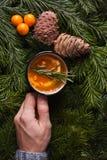 Кружка чая в руке, апельсине приправила чай с мор-крушиной, розмариновым маслом, специей под елью Стоковое Изображение RF
