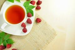 Кружка чая плодоовощ Стоковые Изображения