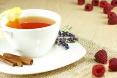 Кружка чая плодоовощ Стоковое фото RF