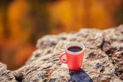 Кружка чая стоит na górze горы Стоковое Изображение RF