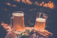 2 кружки светлого пива с хмелем против предпосылки зеленых деревьев внешних, винтажного тонизируя изображения Стоковая Фотография RF