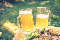 2 кружки светлого пива с хмелем против предпосылки зеленых деревьев внешних Стоковое Изображение RF