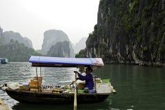 Круизы Вьетнам Halong стоковое фото