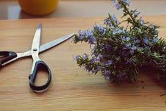 Крупный план, взгляд сверху ножниц среднеземноморского whit букета розмаринового масла букета травы ретро на деревянном столе Стоковые Фото