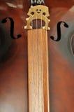 крупный план виолончели предпосылки Стоковая Фотография