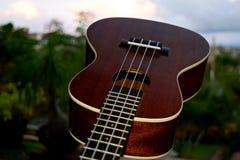 Крупный план гавайской гитары Стоковая Фотография RF